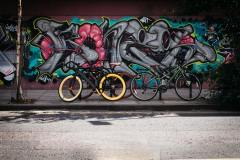 black-and-yellow-fatbike-beside-mountain-bikes-173294